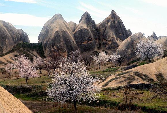 Kapadokyada bahar güzelliği büyülüyor  5