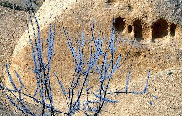 Kapadokyada bahar güzelliği büyülüyor  6