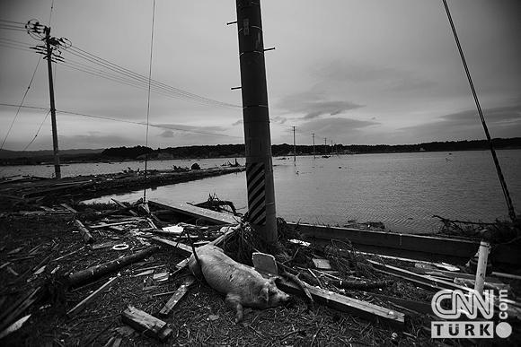 Nükleerin vurduğu hayalet Japon kasabası 9