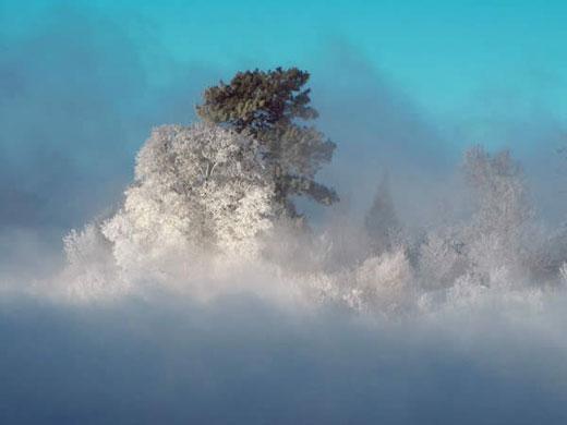 En güzel doğa fotoğrafları  17