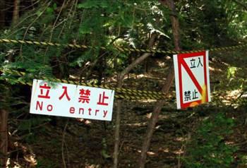 İntihar Ormanı: Aokigahara 7