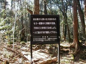 İntihar Ormanı: Aokigahara 8
