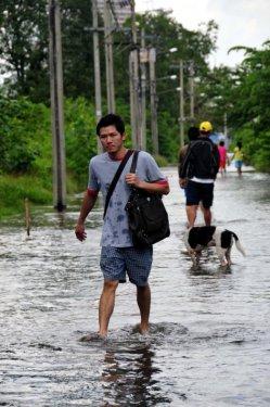 Taylandda yüzyılın en büyük doğa felaketi 7