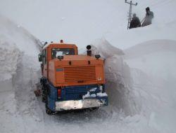 Bitliste Karla Mücadele İl Özel İdare Yetililerini Çileden Çıkardı