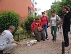 Kediler İçin Sokaklarda Beslenme Odakları Kuruldu
