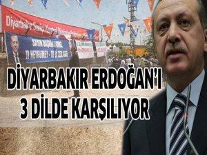 Diyarbakır Erdoğanı 3 dilde karşılıyor