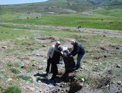 Erciyes'te Temizlik İçin Seferber Oldular