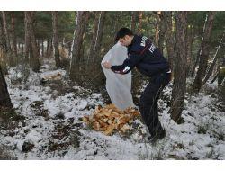 Başkan Ok, Yaban Hayvanları İçin Kent Ormanına Bayat Ekmek Bıraktı