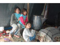 Suriyeliler Yaşam Mücadelesi Veriyor