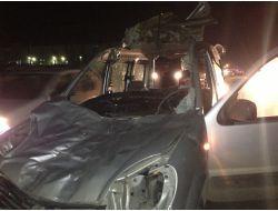 Aracın Ön Camından Girip Arka Camından Çıkan At Öldü, Şoför Yaralı