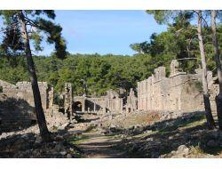 Seleukeia Antik Kentinde Tarihi Eserlere Zarar Veren Çamlar Budanacak