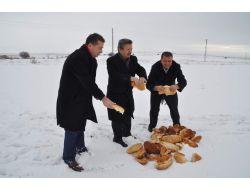 Yozgat Belediyesi, Sokak Ve Yaban Hayvanları İçin Doğaya Yiyecek Bıraktı