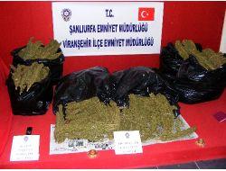 Viranşehir Polisi 46 Kilogram Esrar Ele Geçirdi