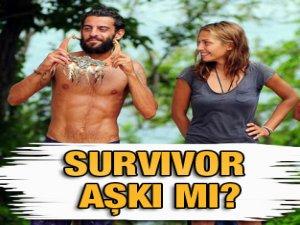 Survivor Duygunun adadaki aşkı