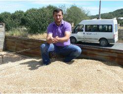 Keşan'da İlk Buğday Ürünü 1,5 Liradan İşlem Gördü