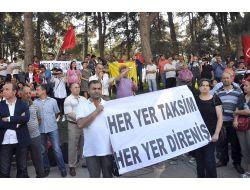 Kocaelinde Taksimdeki Ağaç Kesimine Tepki