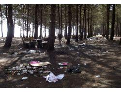 Terme'nin Tek Piknik Alanı Çöplük İçinde