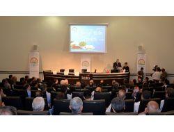 Türkiye Tarımsal Milli Hasılada Dünya 7. Sırada