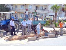 Alanya Cezaevinde Kalan Hükümlüler Belediyenin İşçisi Gibi Çalışıyor