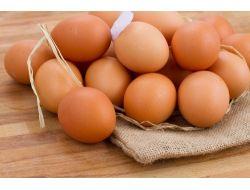 Yumurta İhracatı 500 Milyon Dolara Koşuyor