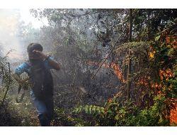 Endonezyada Orman Yangını Hayatı Olumsuz Etkiliyor
