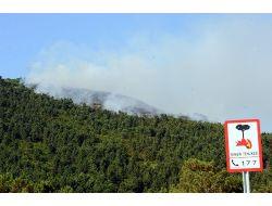 Bakan Eroğlu: Orman Yangınlarının Yüzde 90ı İnsan Kaynaklı, Dikkatli Olalım