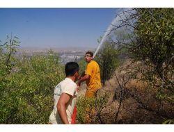 Afyonkarahisarda Yangın: 10 Dönümlük Dikili Alan Zarar Gördü