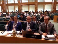 Türkiye, Bm'nin Fao Konsey Üyeliğine Seçildi!