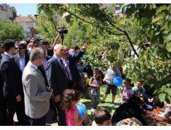 Kayısı Bahçesi, Piknikçilerin Kullanımına Açıldı
