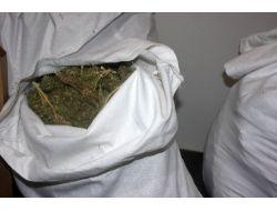 Bingölde Uyuşturucu Operasyonu