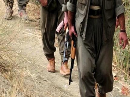 Mardinde 2 PKKlı öldürüldü!