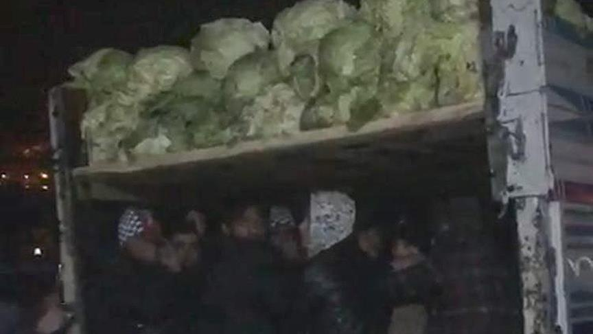 Lahana yüklü kamyonda 38 düzensiz göçmen yakalandı