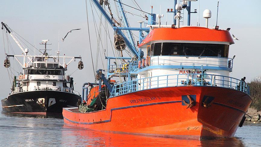 Limana yaklaşık 50 ton hamsiyle döndüler
