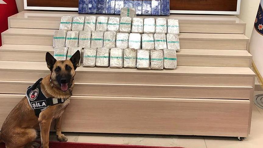 Narkotik köpeği Şila gizlenen 21 kilo eroini buldu