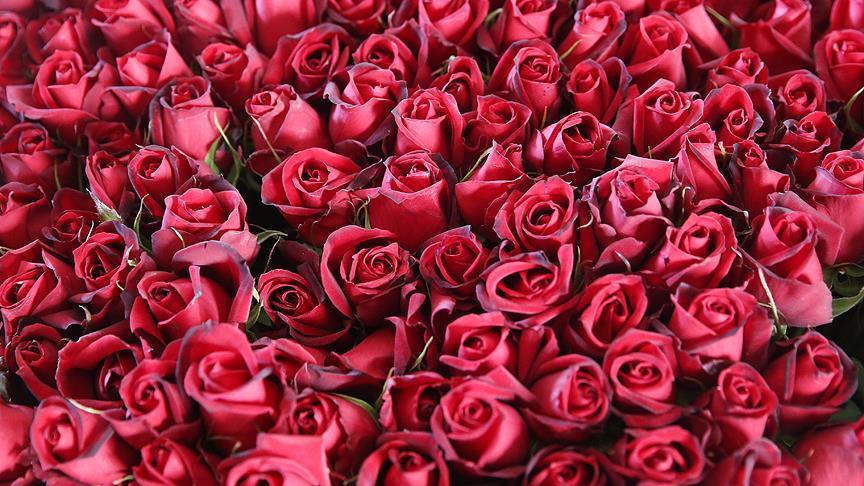 'Sevgililer Günü'nde 2,5 milyar liralık çiçek alıyoruz'