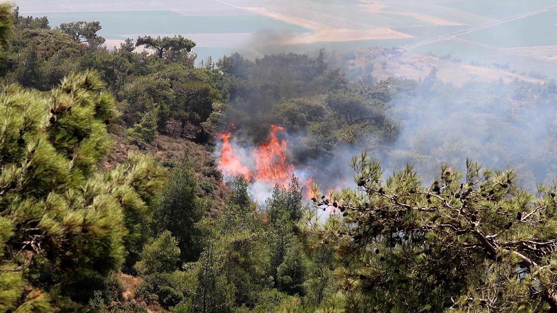 Terör örgütü PKK, orman yakıp şantiyelere saldırdı!