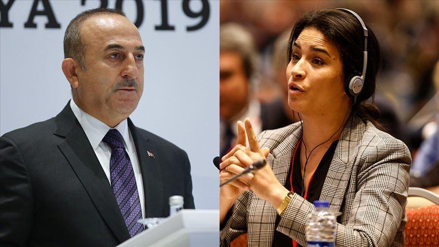Çavuşoğlu dış politikada Türk halkının sesi oldu!