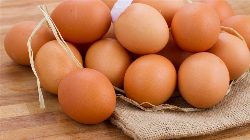 Yumurtada 'İhracat' Sıkıntısı