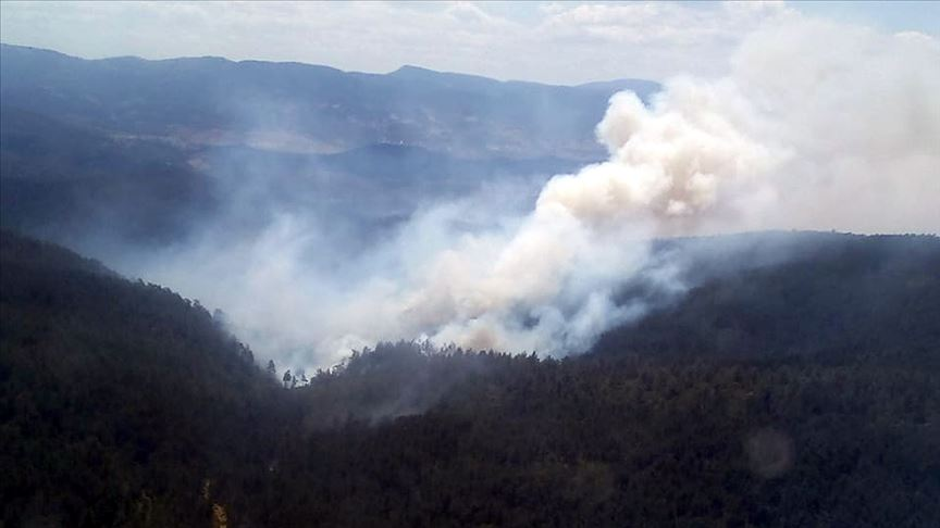 Bursa'daki orman yangını kısmen kontrol altına alındı