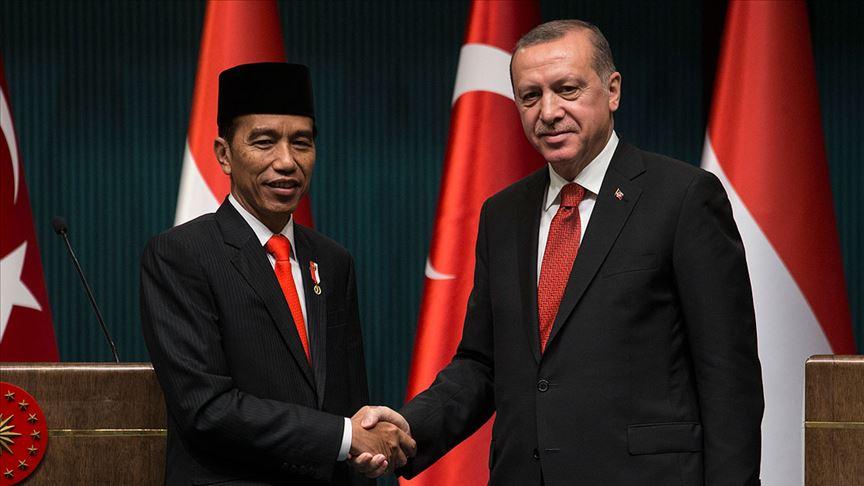 Erdoğan ile Endonezya Cumhurbaşkanı Widodo görüştü