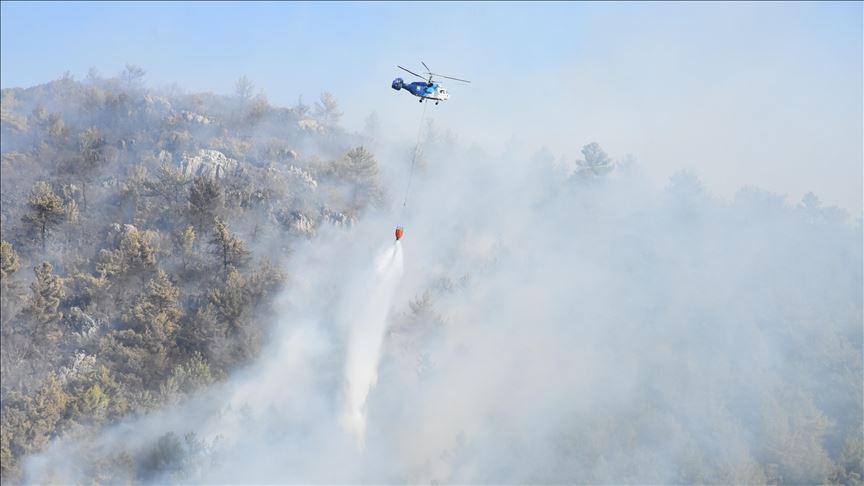 Tarım ve Orman Bakanlığı'ndan yangın açıklaması