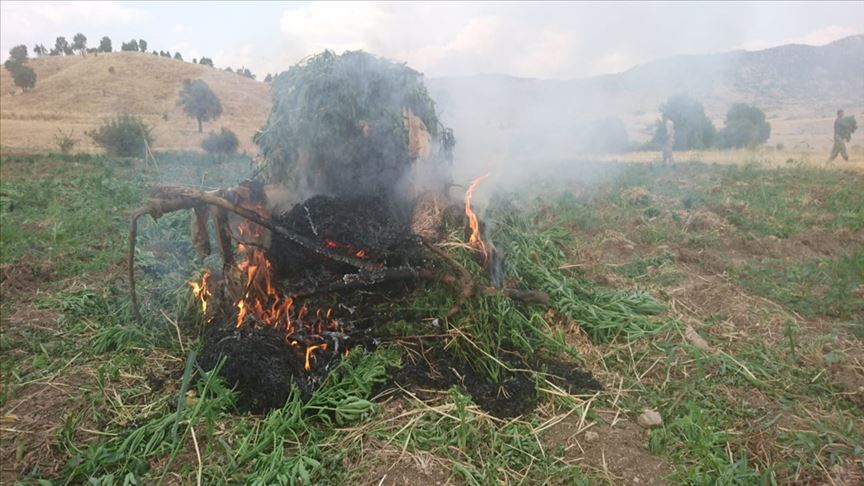 Diyarbakır'da terör örgütü PKK'ya 'uyuşturucu' darbesi