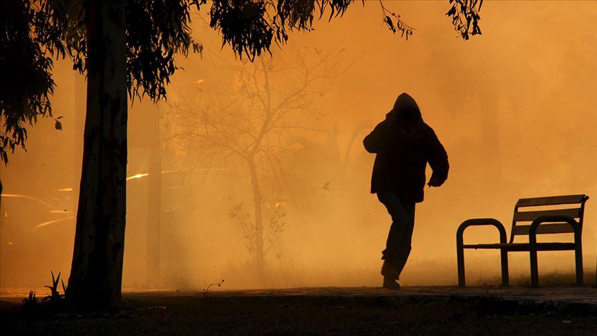 Pendik'deki orman yangınına ilişkin bir şüpheli gözaltında!