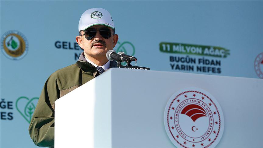 Bakan Pakdemirli: Ağaçlandırılan alan 13 bin futbol sahası büyüklüğünde