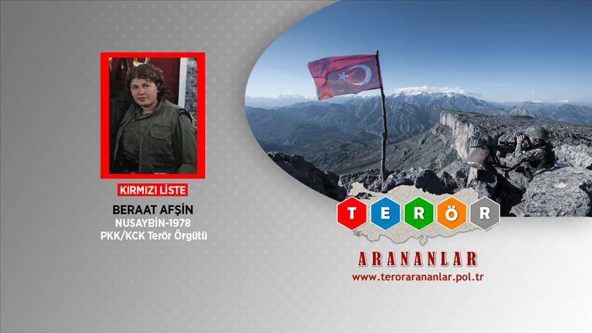 MİT'ten PKK'ya üst düzey darbe