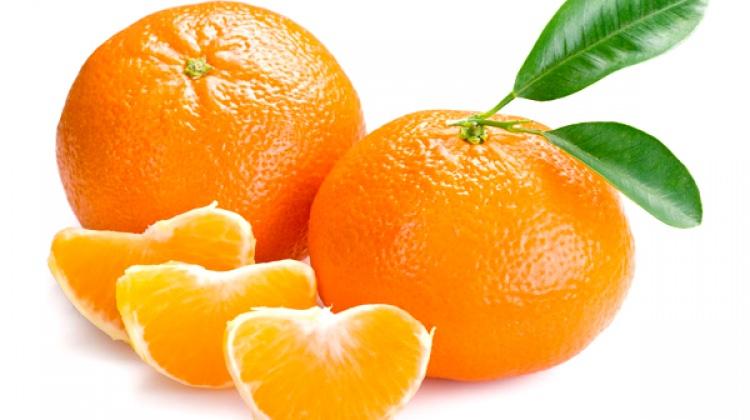 Rusya'ya en çok mandarin ihraç edildi!