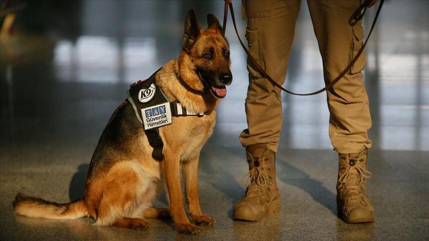 'Lucy' Adnan Menderes Havalimanı'nda güvenliğin vazgeçilmez ismi oldu