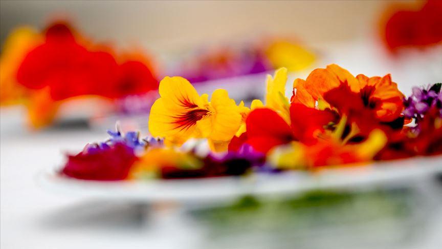 Yenilebilir çiçekler 14 Şubat'ın favori hediyesi oldu!