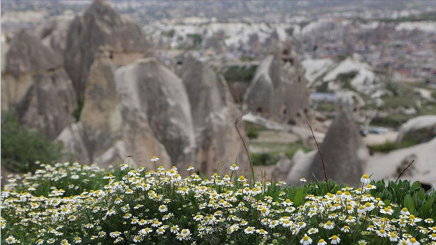 ....Kapadokya'nın ilkbahar manzarası büyülüyor....