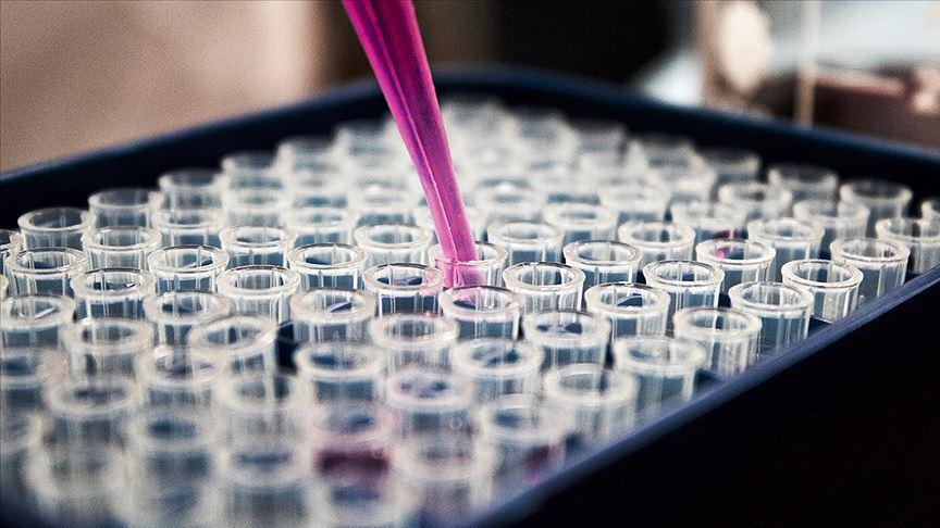 Avrupa İlaç Ajansı: Kovid-19 aşısının üretimi en az 1 yılı bulacak!